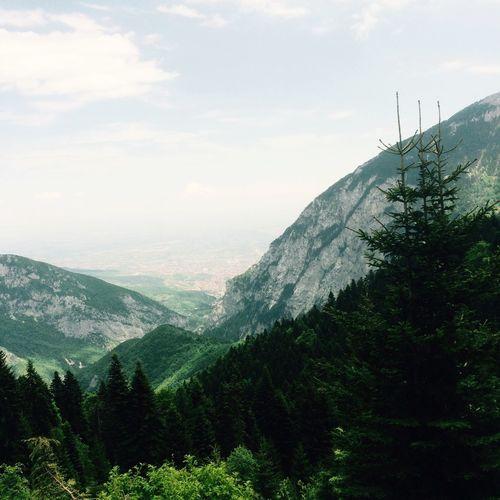 Kosovo Peja Mountain Theperfectview Into The Woods