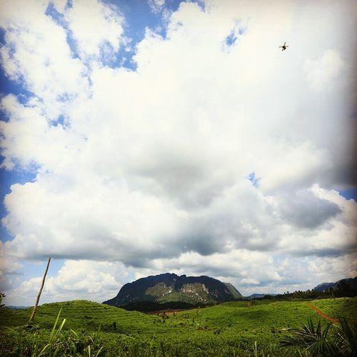 Berau Kalimantan Timur East Borneo Ilasmerah Rock Climbing Expedition Firstascent @klikarbain @arbainrambey
