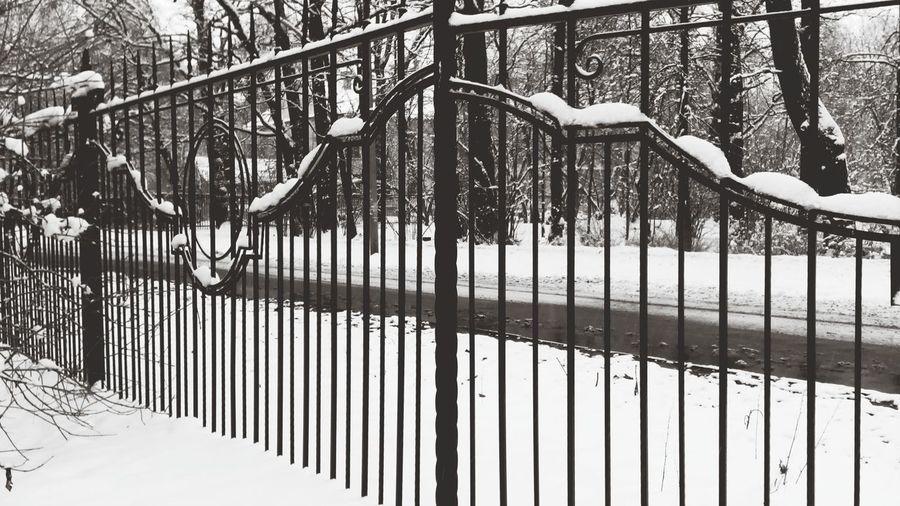 ворота зима