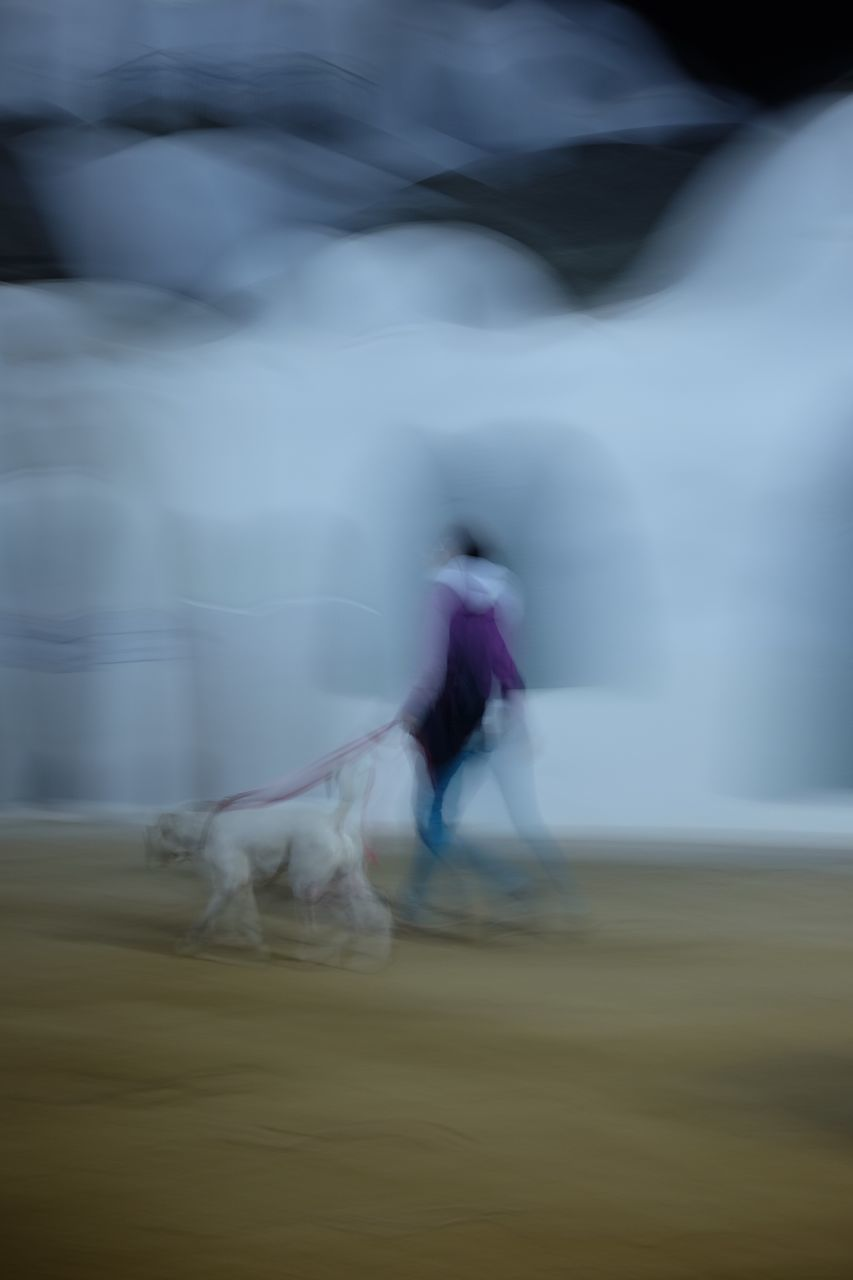 blurred motion, speed, motion, riding, horse, real people, horseback riding, nature, mammal, domestic animals, men, outdoors, day, lifestyles, one person, competition, full length, skill, sports race, beauty in nature, extreme sports, people