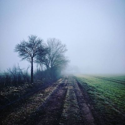 Gruseliger Feldweg in Dinkelsbuhl Manuel Manuelkresser Fotosvonmanuelkresser Studiocafe Nebel