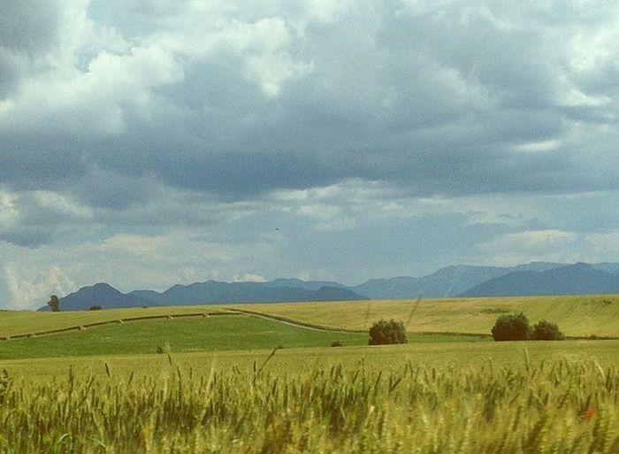 Summer in the paradise. Fieldscape Liptov Traveling Low Tatras