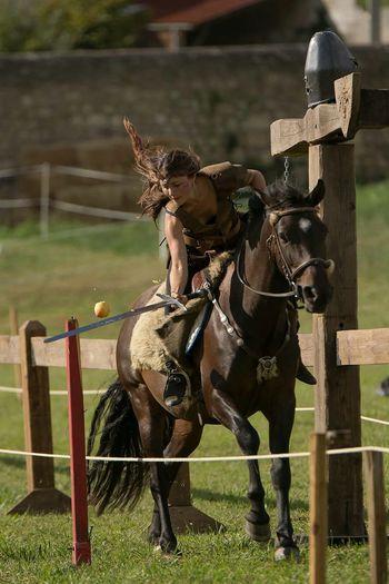 Horse Cheval Chevalier Cavaliere Moyen âge Medievale Autour De Chez Moi Sword Guerrière Mythology