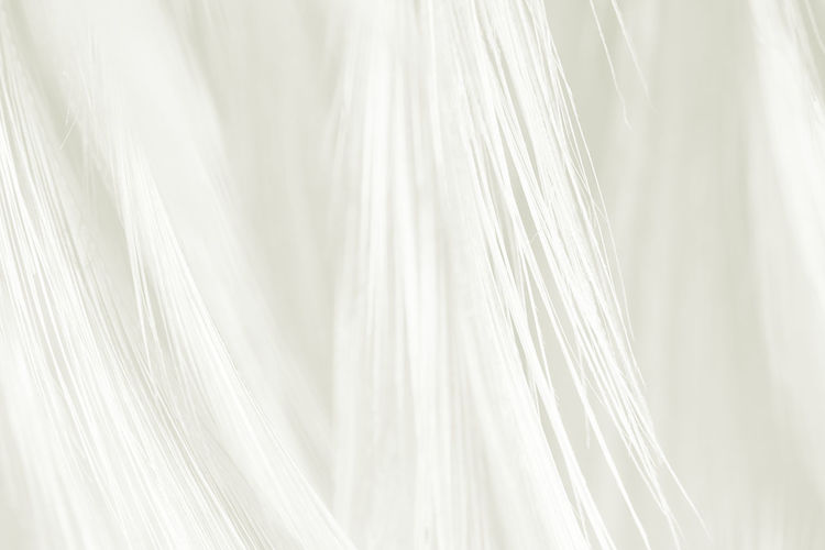 White Color Textile Close-up No People Indoors  Backgrounds Full Frame Curtain Still Life Hair Textured  Pattern Softness Hanging Nature Studio Shot Selective Focus Abstract Clean