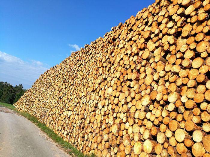 Holz nach Sturm Natur Nature Holz Holzstapel Holzhaufen  Holzstamm Holzlager Holz Wood Wood Art Agriculture Sky