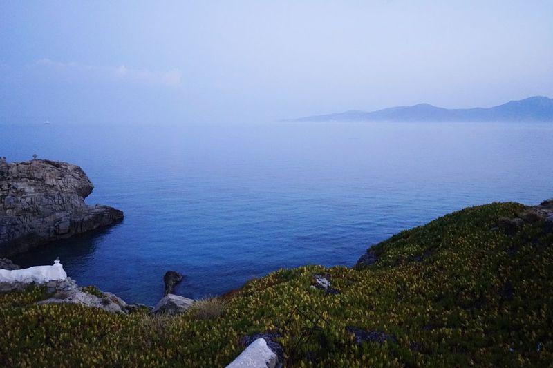 Earth Taking Photos Hello World Enjoying Life Relaxing Sky Morning Mykonos,Greece Ocean Life Greece Summer Views Plant Hidden Gems  Water