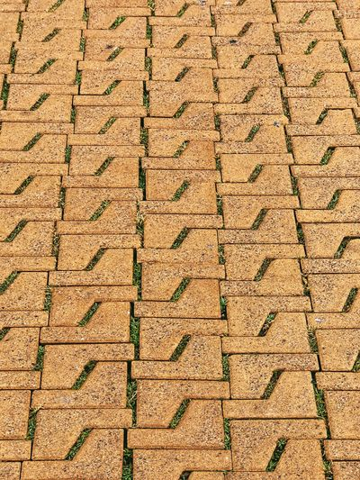yellow pavement texture Texture Textured  Pavement Patterns Pavement Patterns Pavement Full Frame Backgrounds Pattern Textured  No People Day Built Structure Outdoors Rough Close-up Repetition Side By Side In A Row Brown High Angle View