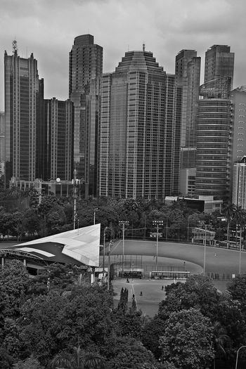 Sport site in the middle of the city Building City City Forest Modern Skyscraper Sport Site Tall Tower