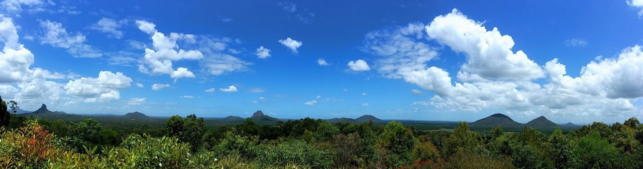 Glasshouse Mountains Panorama Mountains Leaves Nature Photography Australia Sky Cloud - Sky Plant Growth Tree No People Nature Landscape Beauty In Nature Tranquility Day Scenics - Nature Tranquil Scene Panoramic Blue Land