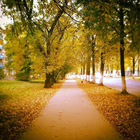 осень без тебя.. СкучаюПоТебеРодная @ladyserebrennikova