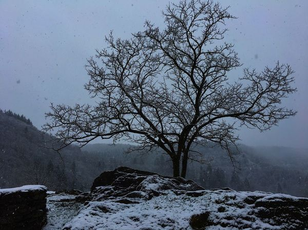 Winter Snow Cold Temperature Weather Nature No People Tranquility Outdoors Shades Of Winter