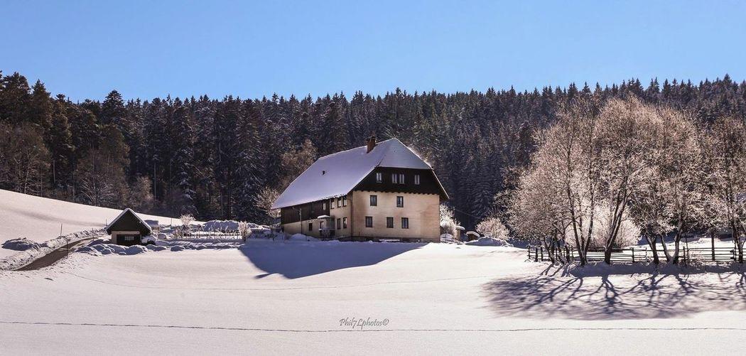 Fotografia Taking Photos Photographer Phil7lphotos Photography Neve Nature Photooftheday Germany Winter Landscapes Winter Landscape Landscapes Landscape_photography Landscape_Collection Snow ❄ Snow