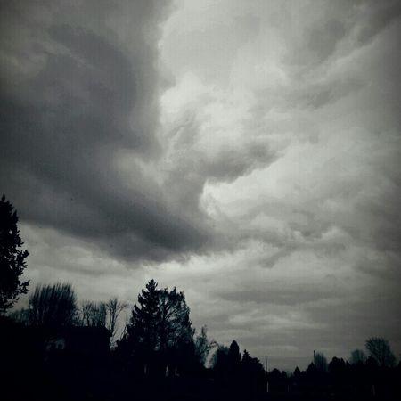 Juziers Ile Verte Nuages Clouds And Sky Ciel Blackandwhite Black & White