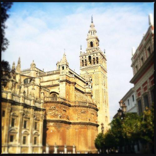 Sevilla Seville Igerssevilla