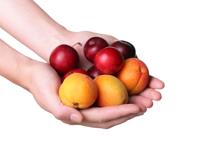 Close-up of hand holding fruits against white background