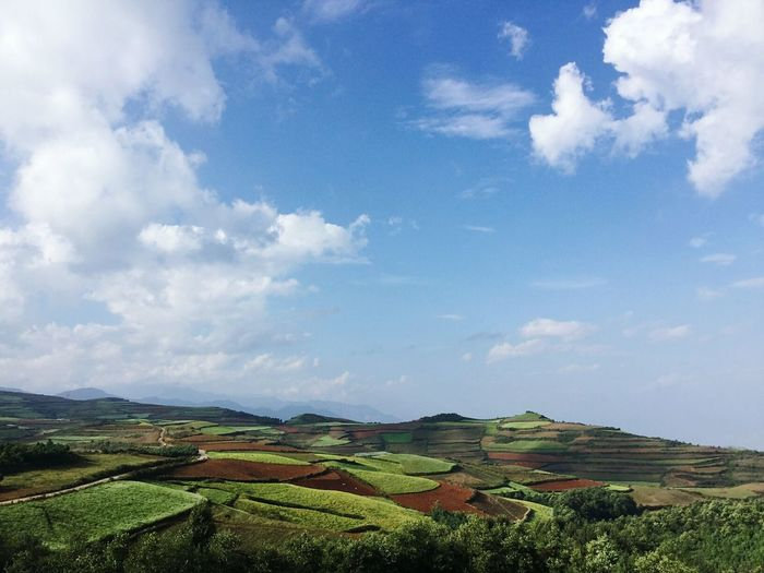 Landscape Tranquil Scene Agriculture Tranquility Rural Scene Scenics Sky Beauty In Nature Farm Solitude Nature Field Growth Cultivated Land Crop  Non-urban Scene Cloud Green Travel Destinations Blue