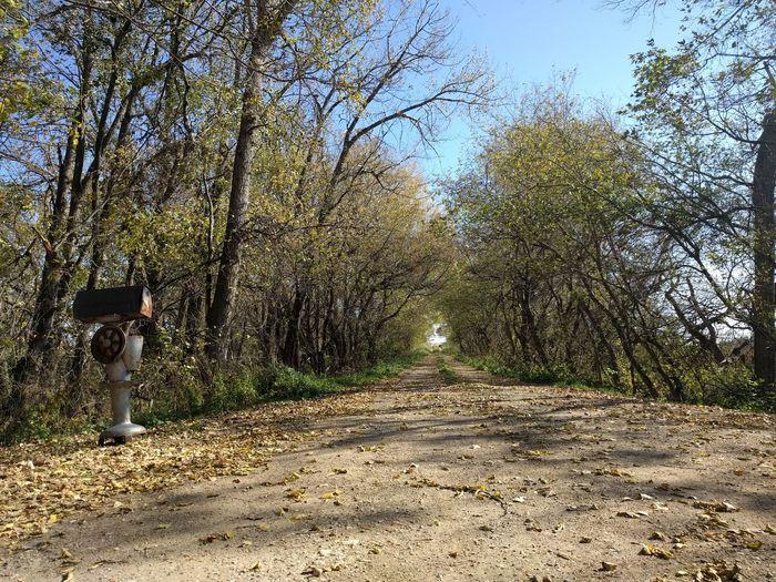 The road to Grandma's house. North Dakota Mailbox