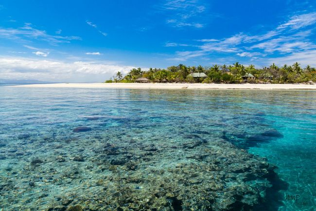 Navini Island, Fiji. Ampimages