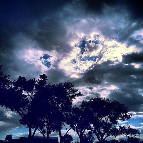 Paradise Hills Park, Abq! Bbehrphotos Cloudy Clouds Beauty trees park sunday weather notell passion4pictures