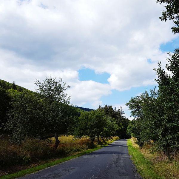 Cloud - Sky Tree Road Day Sky Outdoors No People Nature Slovakia Slovakia🇸🇰 Motorcycle Trip