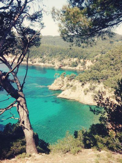 Calanques  Bandol Mediterannee France