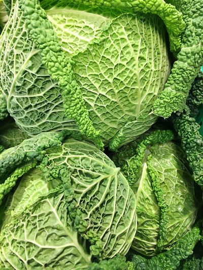 Savoy Savoy Cabbage Vegetables Food Foodphotography Vegetable Green Cooking Cabbage Fresh Produce Healthy Food Photography EyeEm Best Shots Close-up Macro