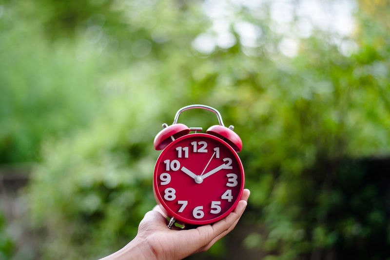 Cropped hand holding alarm clock