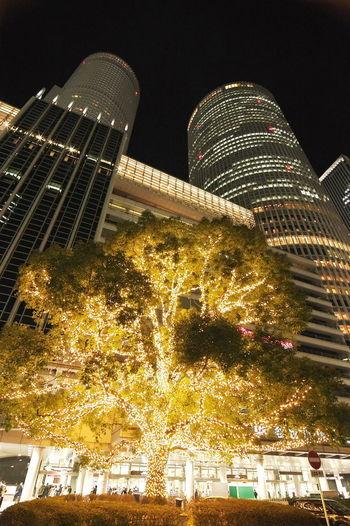 今日の仕事帰りたわ・に撮ってきたのは、名古屋JRセントラルタワーズ前のイルミ。これでもかっ!と言うくらい電球で飾られてます。 イルミネーション Night Illuminated Illumination Tree