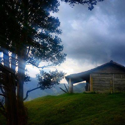 La arquitectura de nuestros paramos tachirenses. Vivienda construida con madera y barro en el paramo de Las Coloradas en Tachira  Venezuela Gotravelfree Gf_venezuela Gf_colombia IgersVenezuela Insta_ve IG_Venezuela InstaLoveVenezuela Instafoto_ve Instaland_ve Destinomaschevere Tequierovenezuela Thisisvenezuela Icu_venezuela Ig_lara Igworldclub Ig_tachira IG_Panama Ig_merida Instavenezuela Elnacionalweb Venezuelapaisajes Instanature Gf_daily venezuelacaptures