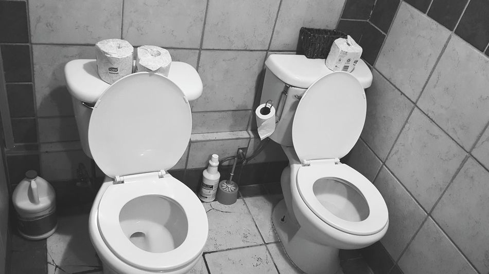 Twins Two Seater Bathroom Toilet Oo Moment