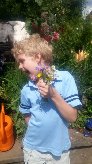Boy with flowers Flower Children Only Child Childhood Blond Hair One Person Outdoors Plant Nature Boys Elementary Age One Boy Only Day People wiesenblumen Happiness Males  Smiling Freshness Flower Head junge Fun Spaß Spaß Am Leben  Geschenke Gift