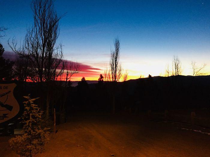 Atardecer Chile Lo Mejor Junio Carabineros De Chile Farellones 2018 Atardecer Sky Sunset Silhouette Plant Nature No People Tree