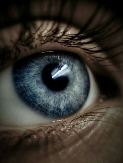 Women Around The World Human Eye Sensory Perception Eyelash Eyesight Close-up Human Body Part Iris - Eye Eyeball One Person Extreme Close-up Macro People Real People Adults Only Adult One Man Only Eyebrow Only Men Outdoors Day