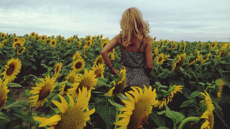 Only Women Yellow One Woman Only Blond Hair Long Hair One Person EyeEm Best Shots - Nature Beauty In Nature Beautiful Women ♥ Women Of EyeEm Sunflower EyeEm Selects Nature One Young Woman Only Outdoors People Day Nature Cloud - Sky Summer Flower Adults Only Adult Vacations Field Lost In The Landscape