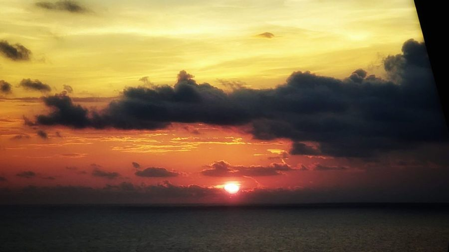 Water Tree Sea Sunset Multi Colored Beach Horizon Yellow Sun Silhouette Sky Only Atmospheric Mood Forest Fire Cloudscape Heaven