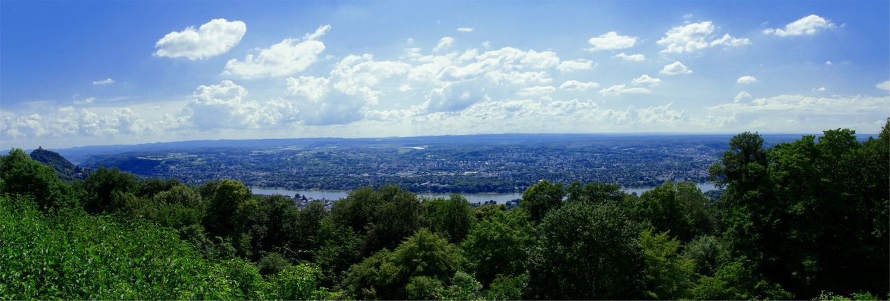 EyeEmNewHere Hill Mountain Mountains River Rhein Rhine Sky View Panoramic Petersberg Bonn Siebengebirge Panorama Plant Sky Tree Beauty In Nature Scenics - Nature Cloud - Sky Tranquility Nature No People Day Horizon Outdoors The Great Outdoors - 2018 EyeEm Awards