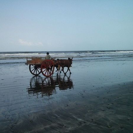 Reflections .. Bullockcart Beach India Konkandiaries