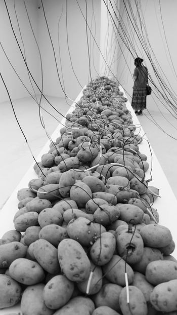 32 Bienal De São Paulo Bienal2016 Sao Paulo - Brazil Potato Energy Energy Power Power Line  ArtPop Arts Culture And Entertainment Blackandwhitephotography Undergroundphotography Monochrome Photography Dramatic Black And White Black And White Photography Art Gallery