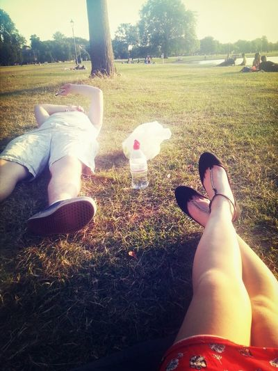 bootcamps all round us and we're just lying here. not feeling fat at all!