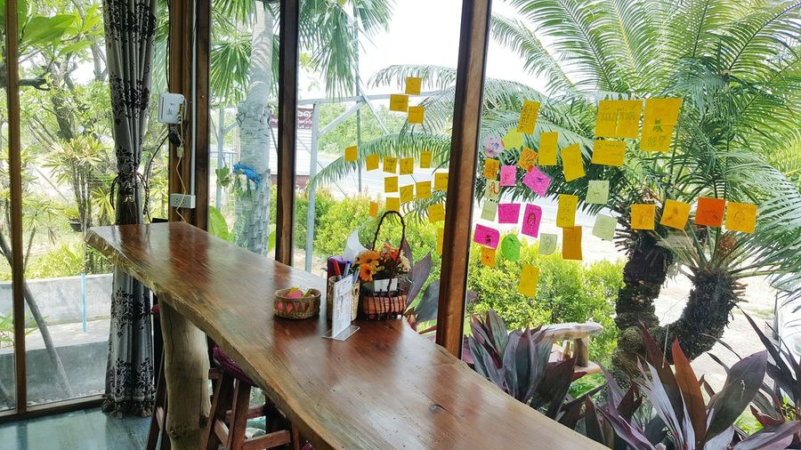 Opens pace shop with wooden bar and clearly wall, some notepads for customers who's need to tell something. Trees Tropical Ferns Paper Wooden Bar Notepads Decoration Glass Wall Inside Office Indoor First Eyeem Photo Nature Outdoors Tree No People Freshness ASIA Thailand Wooden Bar Papers NotePad Glass Wall