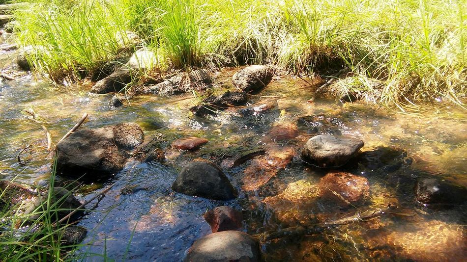 Ahhh Relaxing Taking Photos Check This Out Enjoying Life Water River Rocks And Water Grass
