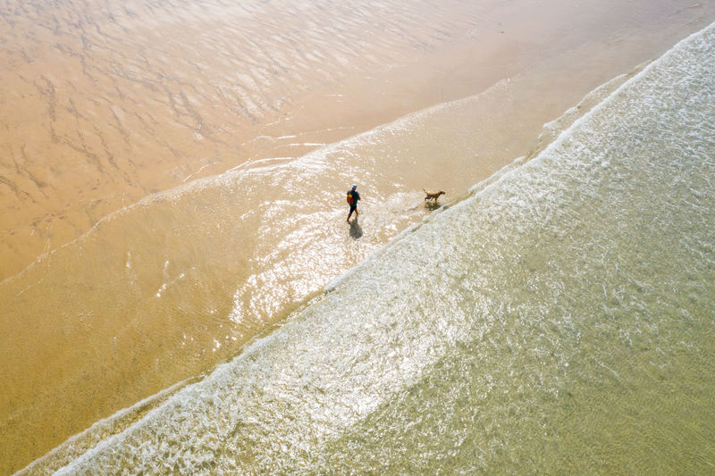 Aerial view of man with dog walking at shore