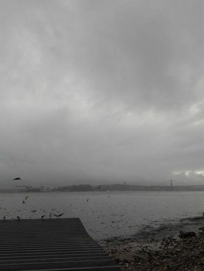 Lisbon Blackandwhite Rain River Relaxing