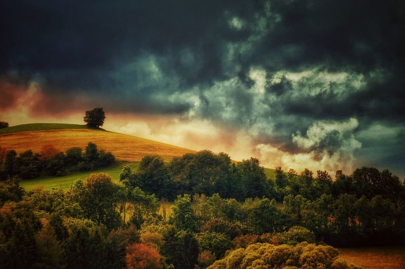 Tranquil Scene Tree Landscape Beauty In Nature Countryside Non-urban Scene Cloud Mountain Dramatic Sky Cloud - Sky Storm Cloud Old Tree Vienna Alps Mystical Atmosphere EyeEm Best Edits Color Palette Melancholic Landscapes Austria A Photo Like A Painting Global Photographer-Collection EyeEm Nature Lover