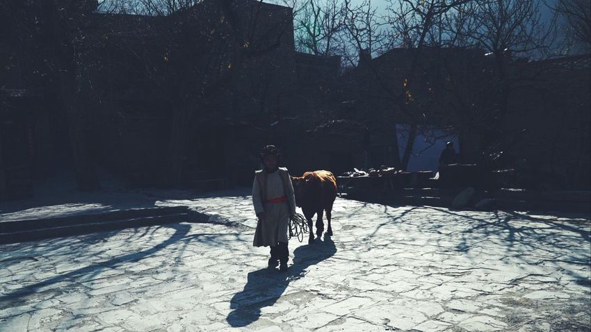 Winter Snow Cold Temperature Two People Sunlight Walking The Street Photographer - 2017 EyeEm Awards Nature Tree Leisure Activity Full Length Beauty In Nature Outdoors Real People The Week On Eyem Adult Day People Men Film Eyemphotography Eyem Best Shots Culture Sculpture China