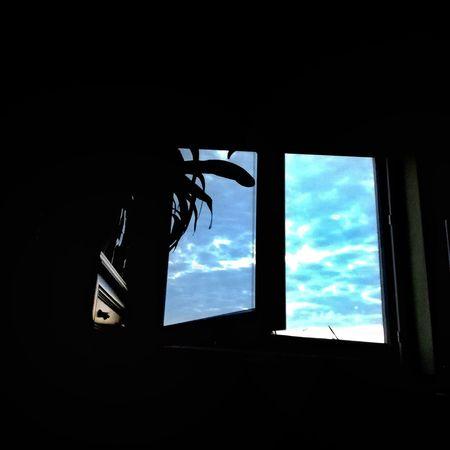 Zdjęcianiespodziewane Huawei Polska Niebo Niebieski Blue Blue Sky Inowrocław Okno Widok Z Okna Window Sky Close-up Cloud - Sky Summer In The City