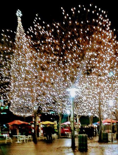 Crown Center Plaza, Kansas City, MO Christmas Tree Christmas Decoration Christmas Lights Christmastime Winter Irwin CollectionIlluminated Eyem Gallery Outdoor Photography Kansas City Wintertime Outdoors EyeEm Gallery Eyeem Photography Christmastime 🌲 Irwin Collection Night