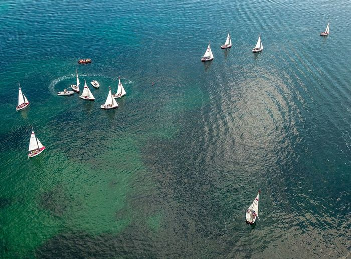 boat race in Cannigione, Sardegnia Aerial View Aerial Horizon Over Water Eye4photography  DJI Mavic Pro Drone  Dronephotography Dji Droneshot Boating Landscape Sardegna Landscapes Traveling Nature Beauty In Nature Naturelovers Nature Photography EyeEm Nature Lover Landscape_Collection Nature_collection Water Nautical Vessel Sailing Aerial View High Angle View Sea Sailing Boat Sailboat Regatta