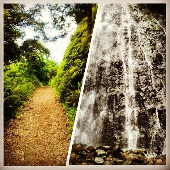 chasing waterfalls Nature Adventure Lovemyhome