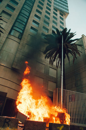 Fire on building by palm tree
